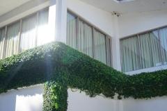 architecture-daylight-garden-226515