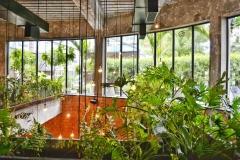 architecture-balcony-building-974400